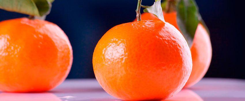 La vitamina D protege frente al Cáncer de Vejiga
